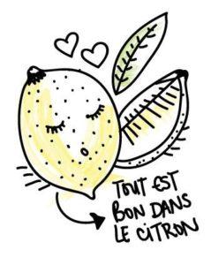 tout-est-bon-dans-le-citron